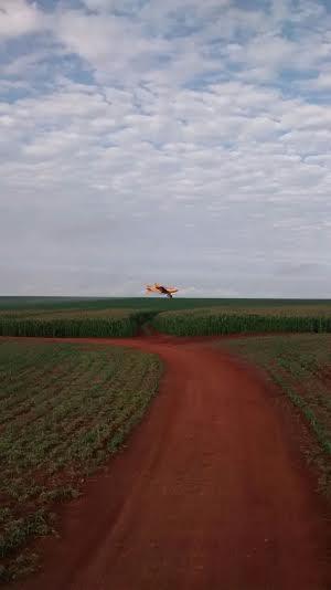 Imagem do dia - Aplicação de fungicida nas lavouras de milho safrinha em Cruzália (SP), da família Varolo