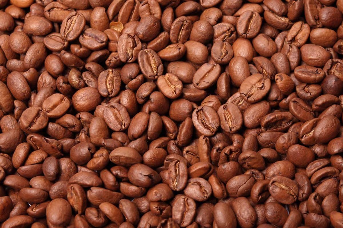 TEMPORADA DE CAFÉ 19/20 TERMINA COM COTAÇÕES EM ALTA.