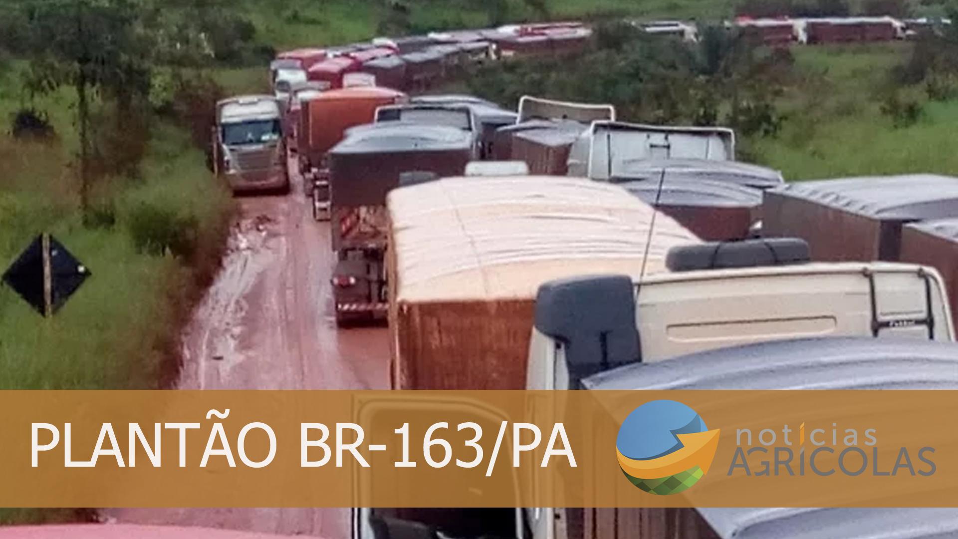 PLANTAO BR163 - 2