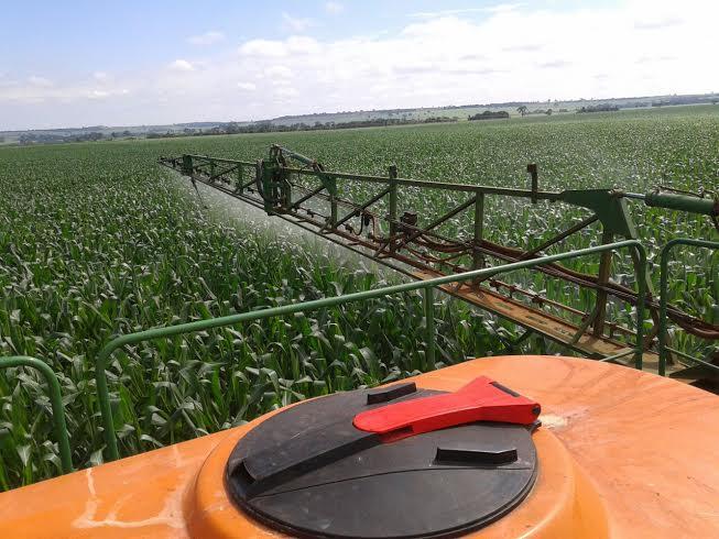 Imagem do dia - Aplicação de fungicida na Fazenda Pântano em Conceição das Alagoas (MG), na propriedade de Argemiro Rossi e filhos