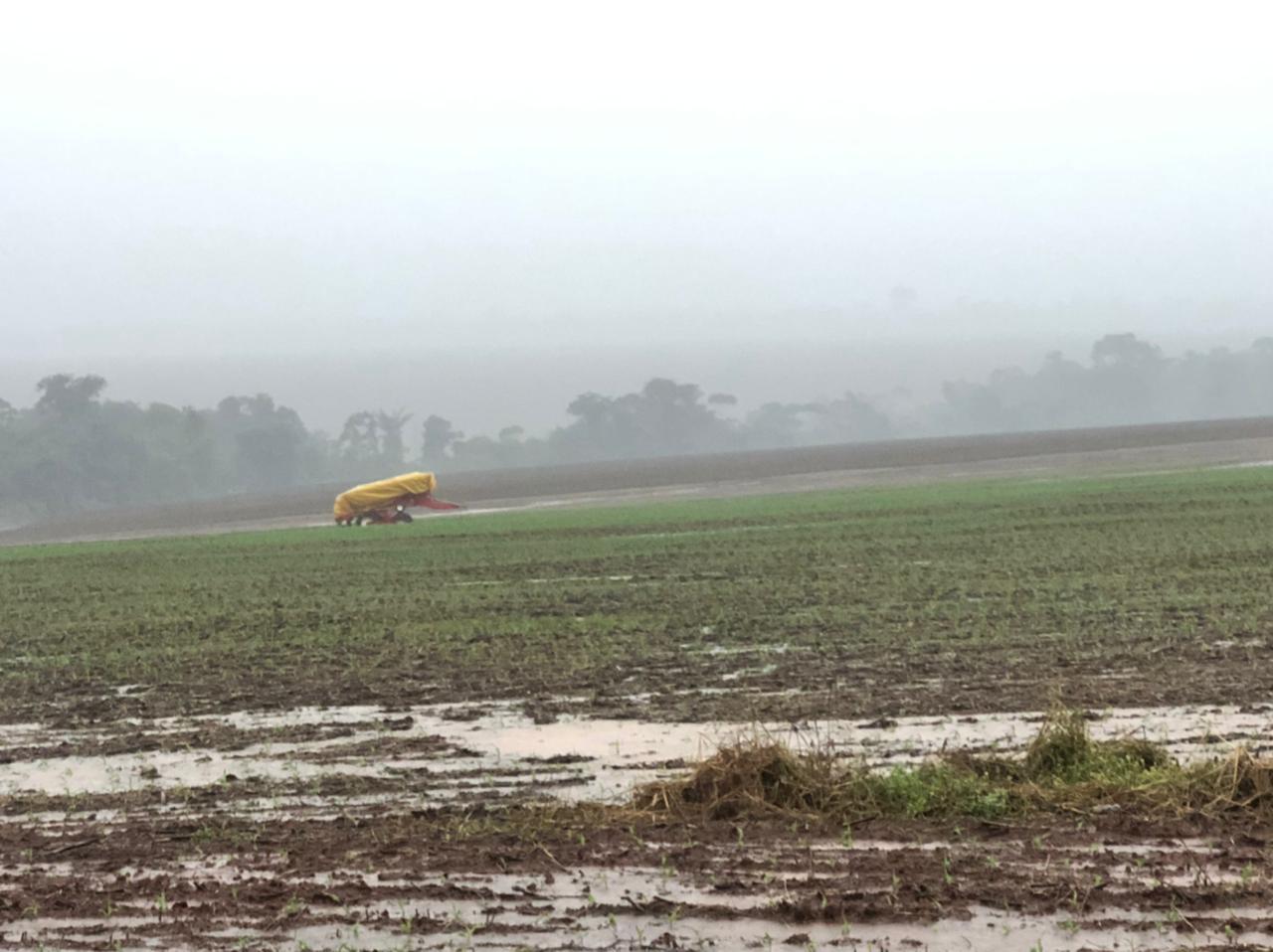 Soja perdendo qualidade com a chuva em Mato Grosso - Safra 2020/21