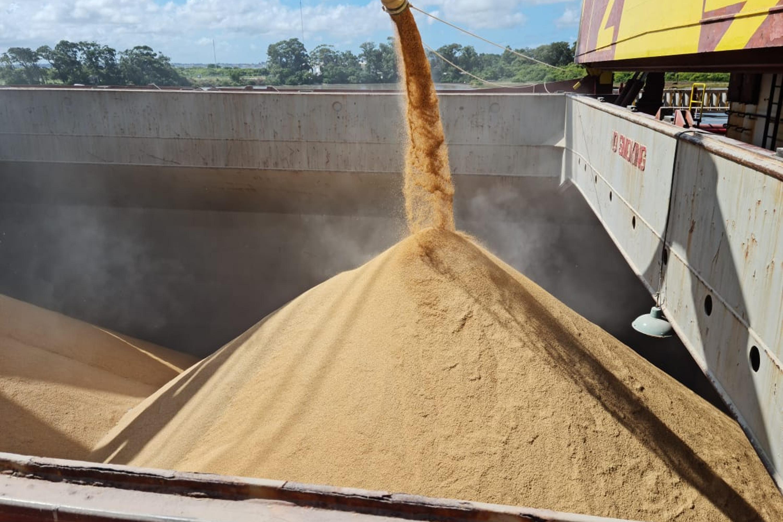 embarque_navio_arroz_exportação_federarroz