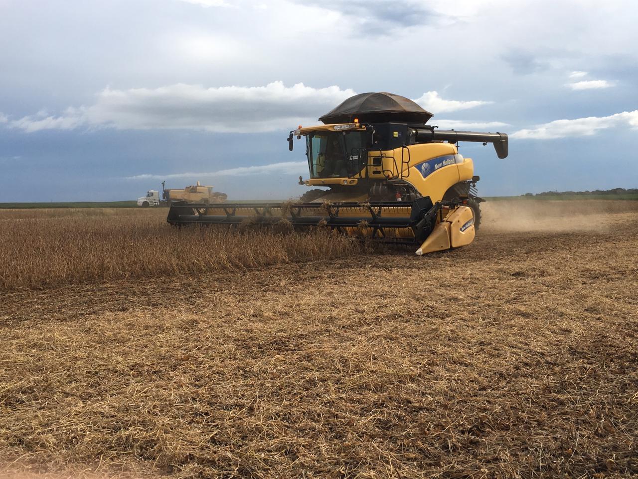 Colheita de soja em Darcinopolis-Tocantins Enviado Marcílio Fernandes Marangoni