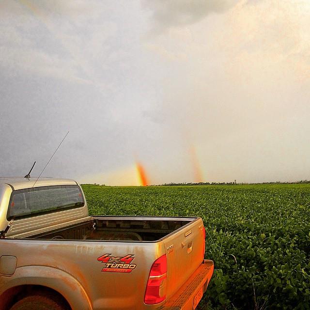 Lavoura de soja em Chupinguaia (RO). Imagem do produtor rural, Eduardo Sartor.