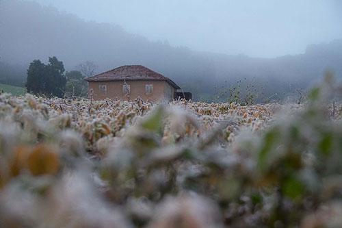 Neve em Frederico Westphalen/RS - Foto Noticias Band