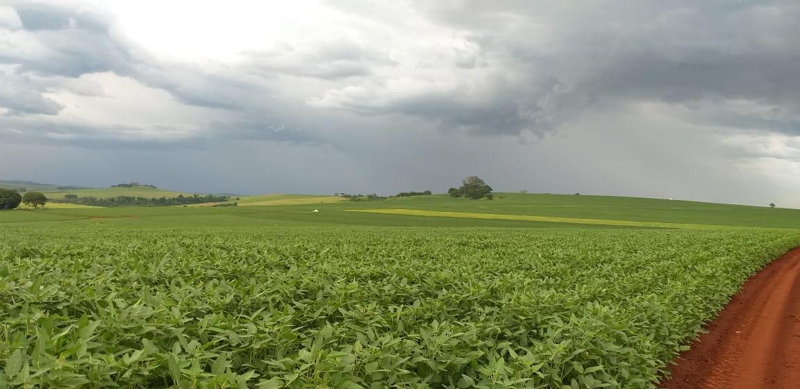 Ocorrência de chuvas chegando conforme as previsões. Envio de Valdir Fries