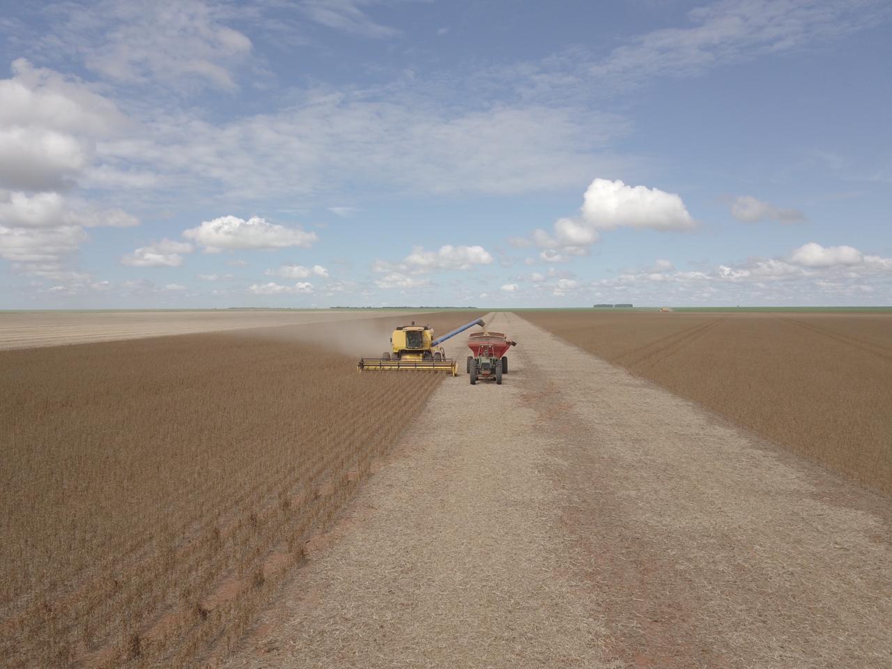 Finalizando colheita na faz. Vila Nova, São José do Rio Claro MT.