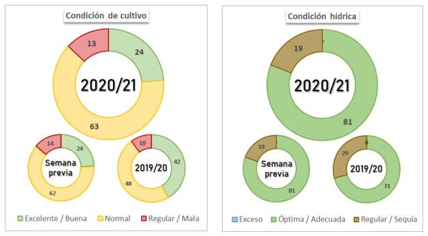 Gráficos Soja e Milho - Bolsa de Buenos Aires