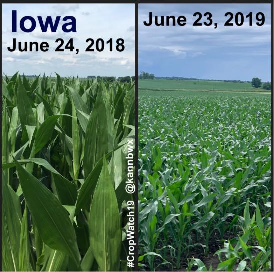 Iowa 2019