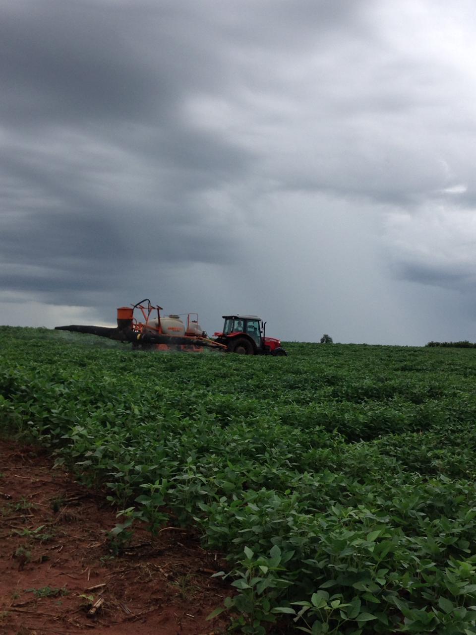 Aplicação de fungicida em Itápolis (SP). Envio dos produtores Mauricio e Moacir Bonfante