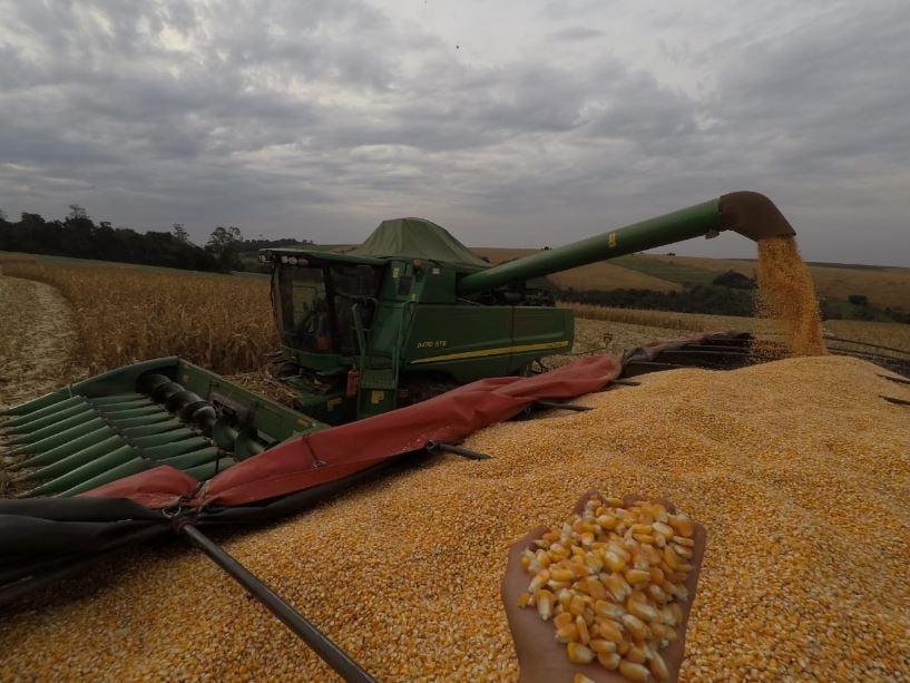 Início da colheita do milho safrinha 2018 em Japurá (PR). Envio de Rafael Negrisolli