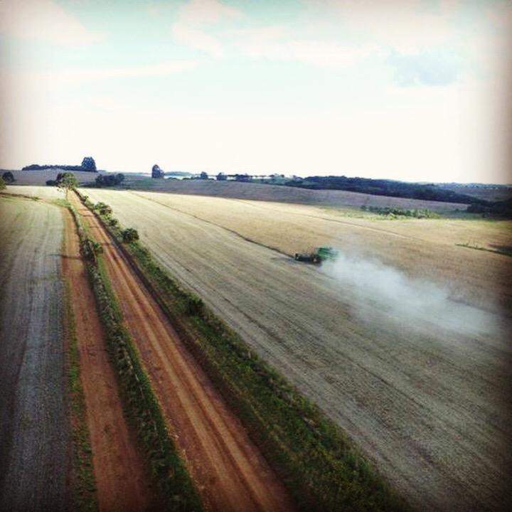 Colheita da soja na Fazenda Agrícola Irmãos Tres em Santa Cecília do Sul (RS). Envio do Engenheiro Agrônomo Mauricio Tres