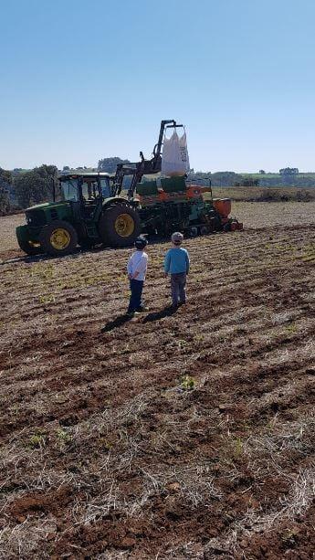 Plantio de milho em Seberi (RS). Envio de André Dias