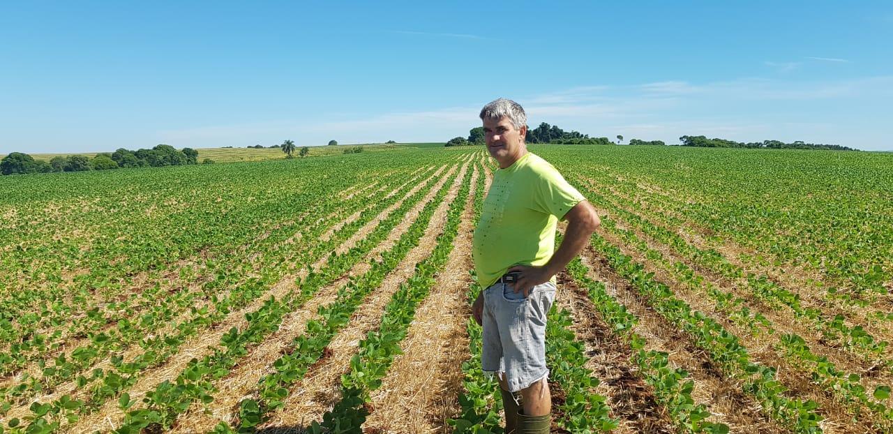 Lavoura de soja variedade 50i52 Raio do produtor Roberto Ongarato em Barra Funda (RS). Envio do consultor técnico Luciano Colombo
