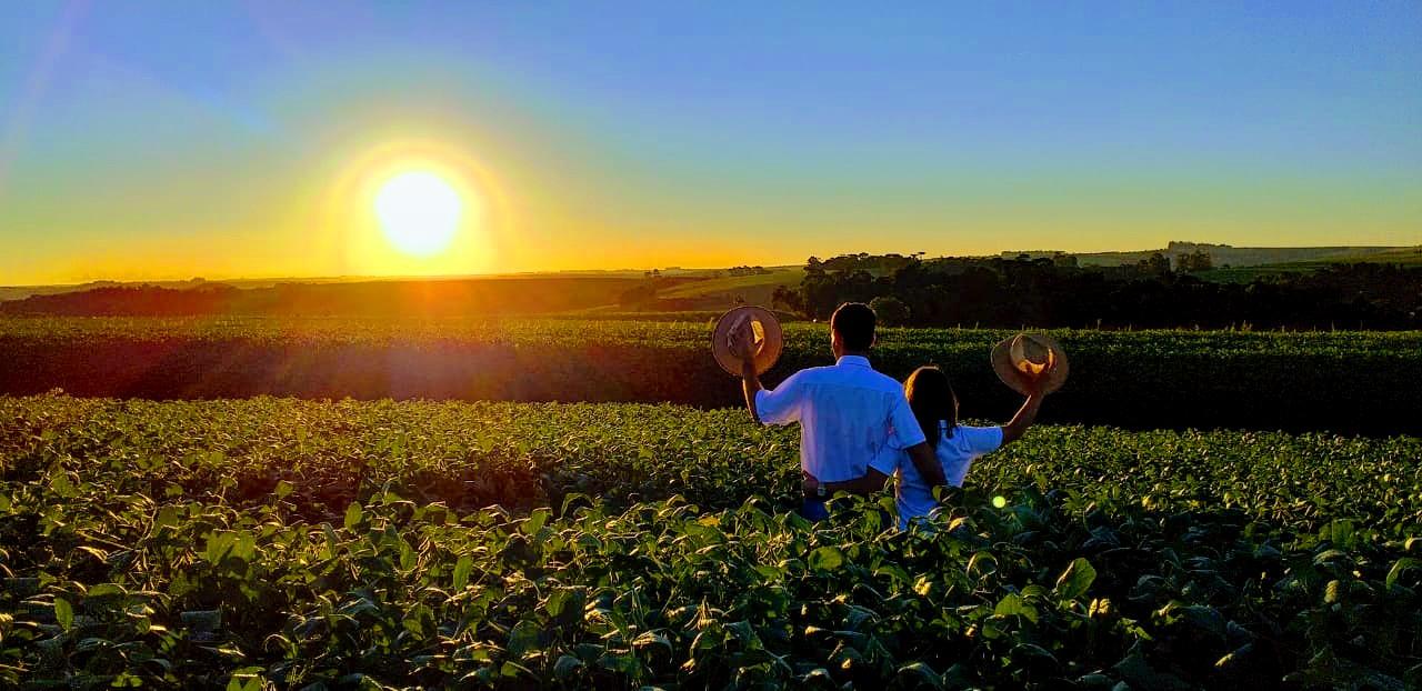 Do plantio à colheita, ao recebimento de grãos, trabalhando juntos. Nova Ramada/RS