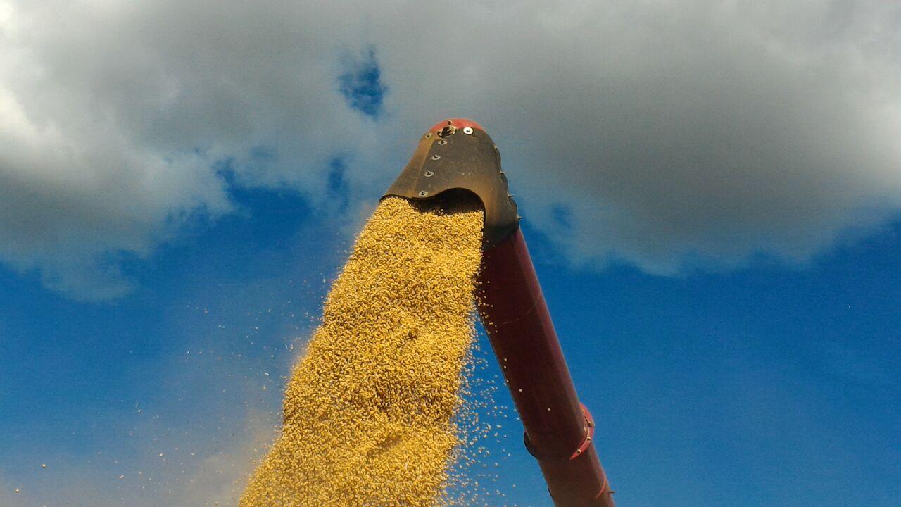 Colheita Soja Safra 17/18 em Campos Novos (SC). Foto do Engenheiro Agrônomo Jean Paulo Almeida