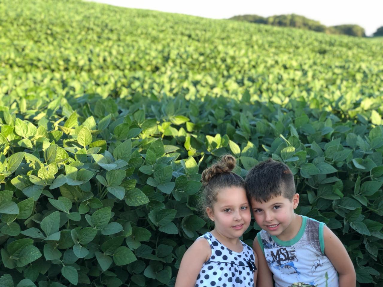 Valentina e Lorenzo, filhos de César Copatti, na lavoura de soja de variedade Alvo no município de Ibiaca (RS)