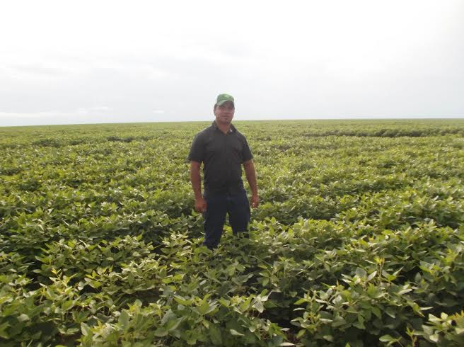 Imagem do dia - Lavoura de soja na região de Uruçuí (PI). Envio do engenheiro agrônomo e consultor em captação de recursos financeiros, Gustavo Rodrigues