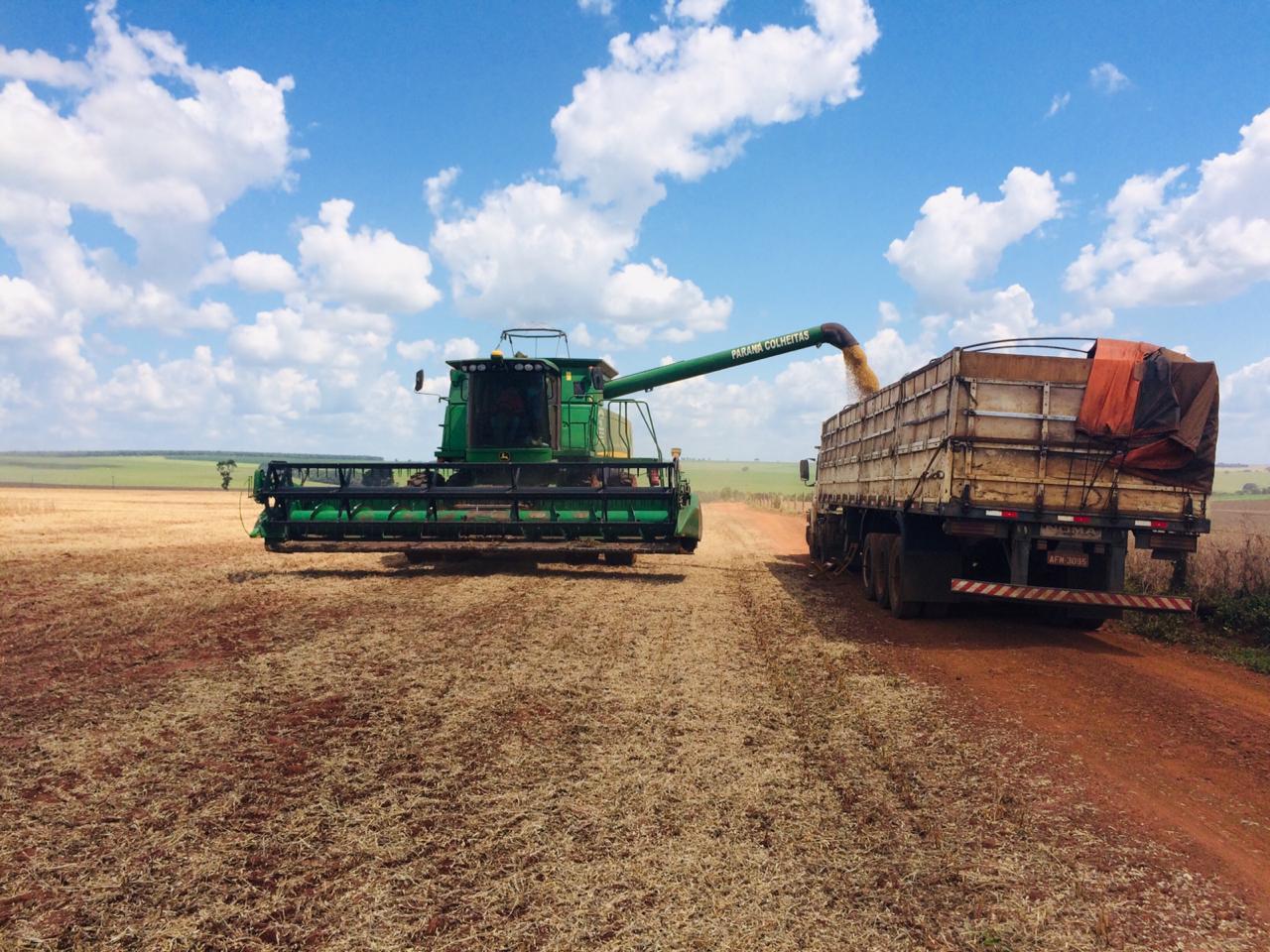 Colheita de soja em Rio Verde (GO). Envio de Alex Zamonaro
