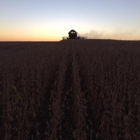 Imagem do dia - Colheita da soja em Jacuizinho (RS), do produtor rural Rodrigo Bortoluzzi