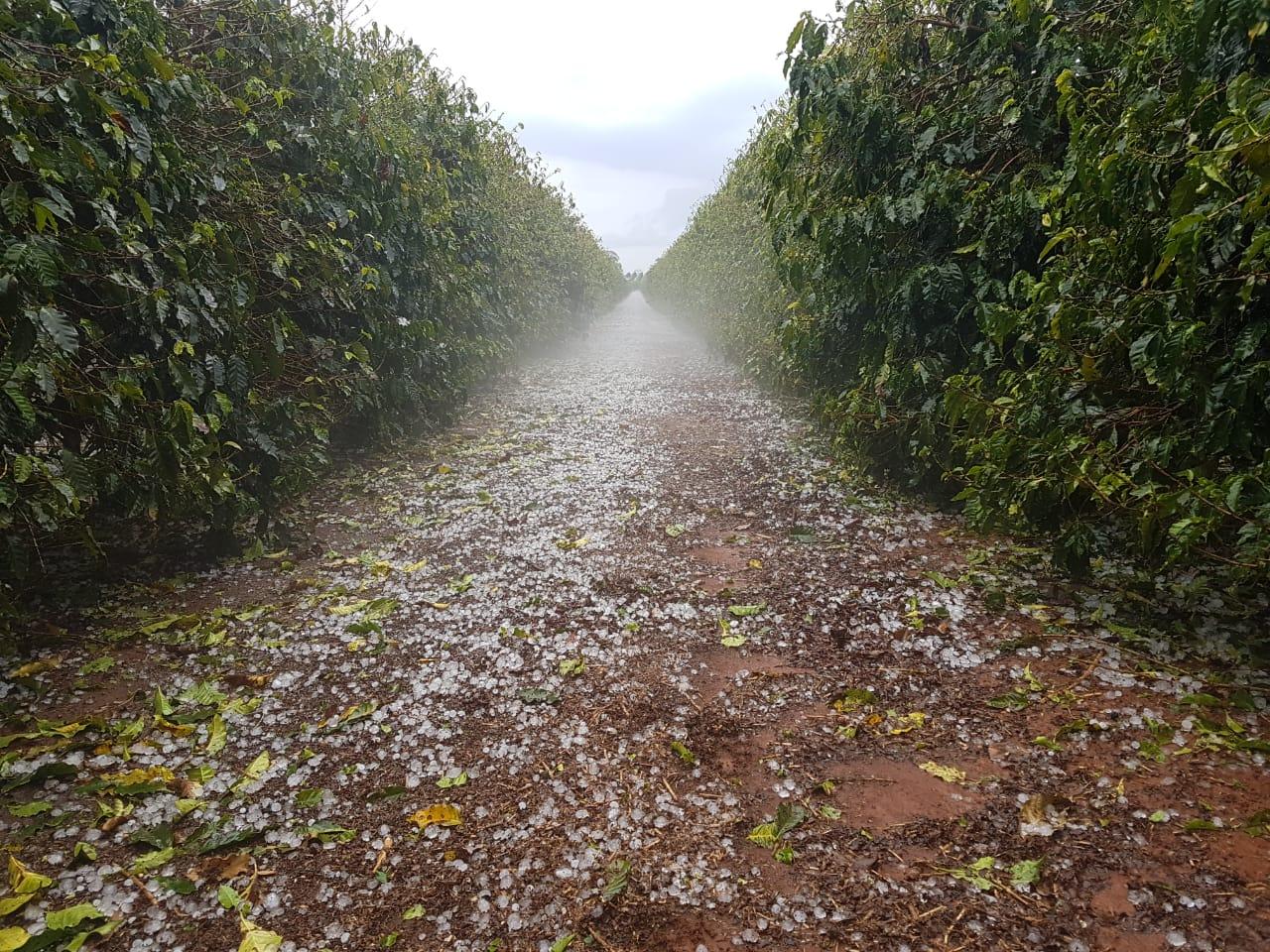 Chuva de granizo no sábado (15) em Patrocínio (MG) - Foto: Reprodução/ Redes sociais
