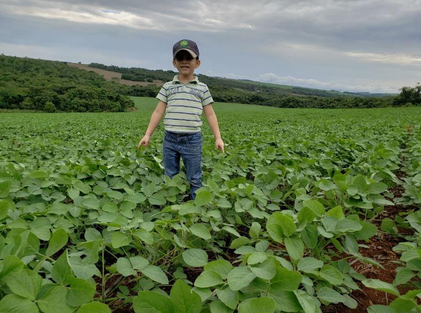 Lavoura de soja cultivar 7110 Monsoy em Jatai (GO) Envio do produtor Carlos Henrique