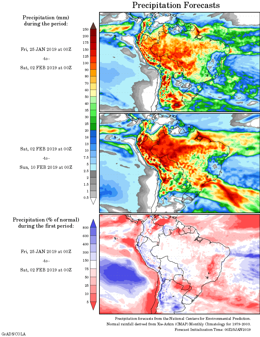 Mapa com a tendência de precipitação acumulada para o período de 25 de janeiro até 10 de fevereiro - Fonte: National Centers for Environmental Prediction/NOAA