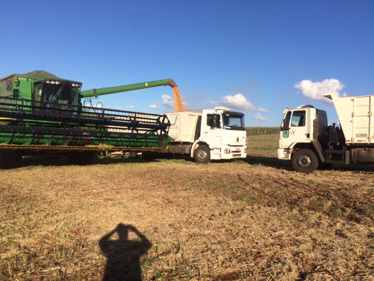 Final da colheita de soja em Ibiaçá (RS). Envio de Cesar Luis Copatti