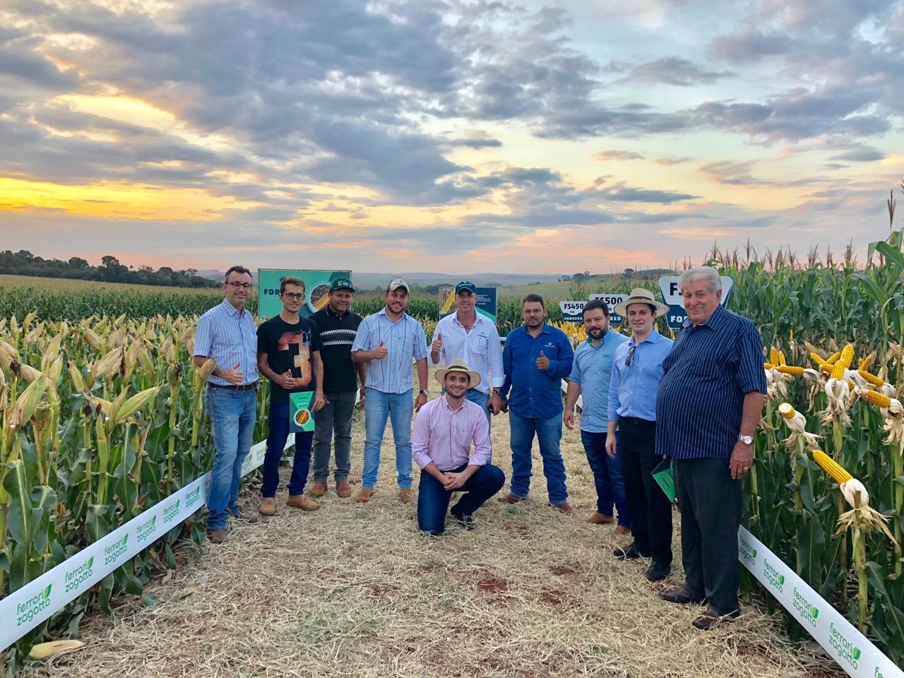 Segunda safra de milho - Dia de Campo realizado na cidade de Itambé (PR). Envio de Nivaldo Forastieri