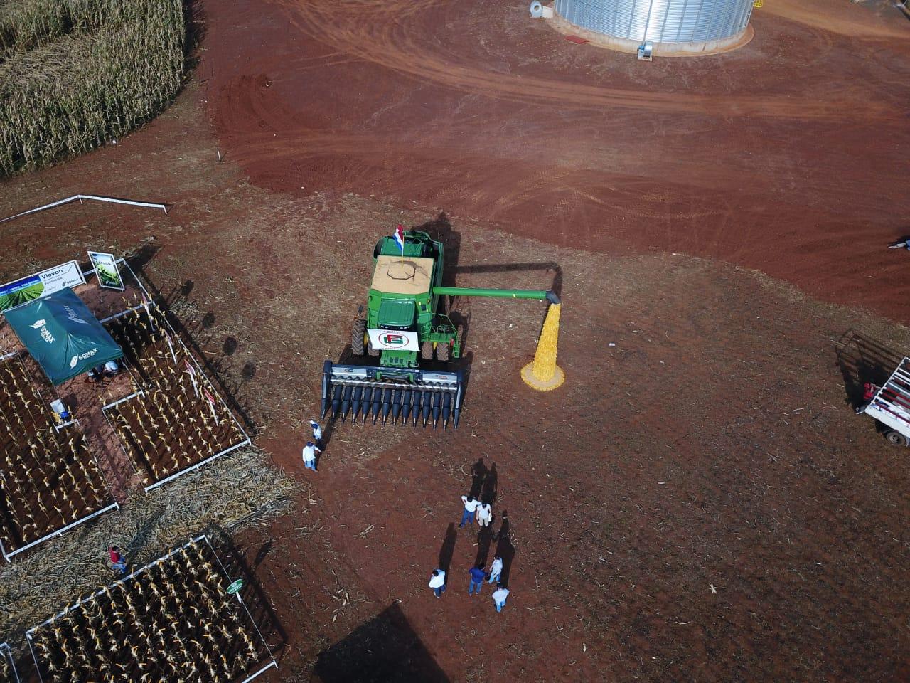 Dia de campo milho safrinha em Nova Toledo - Paraguay. Envio de Nilson Kohler