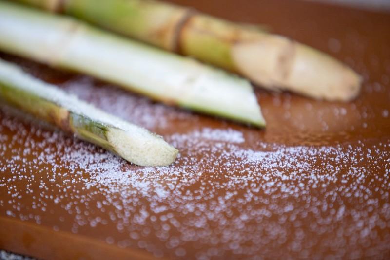 Cana-de-açúcar - Foto: Unica
