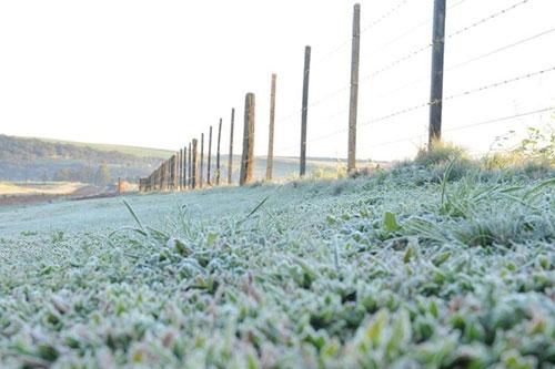 Neve em Passo Fundo 2 - Foto Zero Hora
