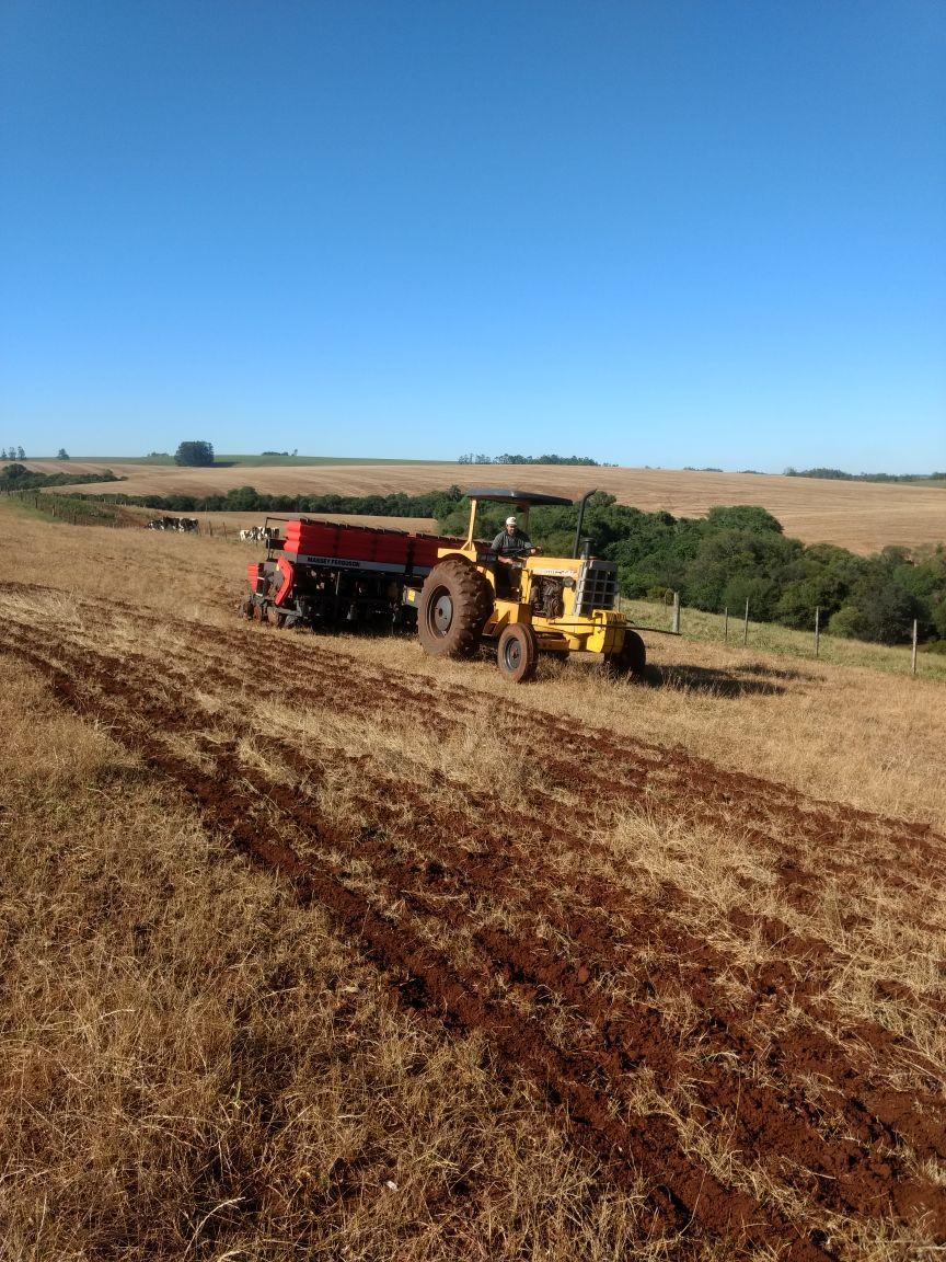 Plantio de soja na Agropecuária Jacomina, em Cruz Alta (RS). Envio de Jorge Luiz Fredi