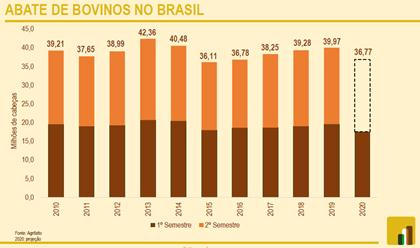 Dados sobre o mercado do boi gordo no 1º semestre - Nutricorp
