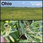 Ohio 2