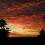 Foto 05 - Entardecer em Terra Roxa (PR). Enviado por Criss Varolo