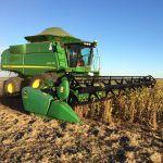Colheita de soja em Nova Xavantina (MT), na Fazenda Vera Cruz