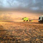 Colheita de soja em Ipiranga do Norte (MT), dos irmãos Damo