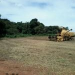 Colheita de soja em Ipaussu (SP), do produtor Romulo Gazola