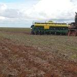 Final do plantio de milho safrinha em Cristalina (GO), do produtor Diego Prezzotto