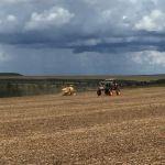Colheita da soja em Iraí (MG) para plantio de milho safrinha na Fazenda Antagordense