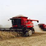 Colheita de soja em Seberi (RS), da Agrícola Irmãos Barbieri