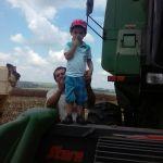 Colheita em Santa Cruz da Conceição (SP), dos produtores Valter e Nicolas Capodifoglio
