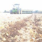 Plantio de milho safrinha em Chapadão do Céu (GO), envio de Valdecir Flores