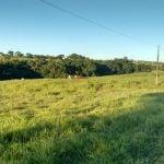 Fazenda em Conselheiro Mairinck (PR), envio de Puca Minardi