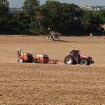 Plantio do trigo em Wenceslau Braz (PR), produtor Darci Bassi