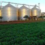 Silo Agrofort em Katuete (PY), envio do Engenheiro Agrônomo Maiko Bianchet