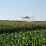 Aplicação de fungicida de milho safrinha em Frutal (MG), envio de Itamar Resende