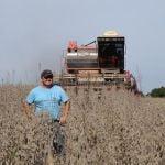 Fim da colheita de soja na Fazenda Costa Curta em Vista Alegre do Prata (RS), envio de Vitor