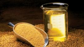 NOPA: Esmagamento de soja dos EUA em agosto supera expectativas do mercado